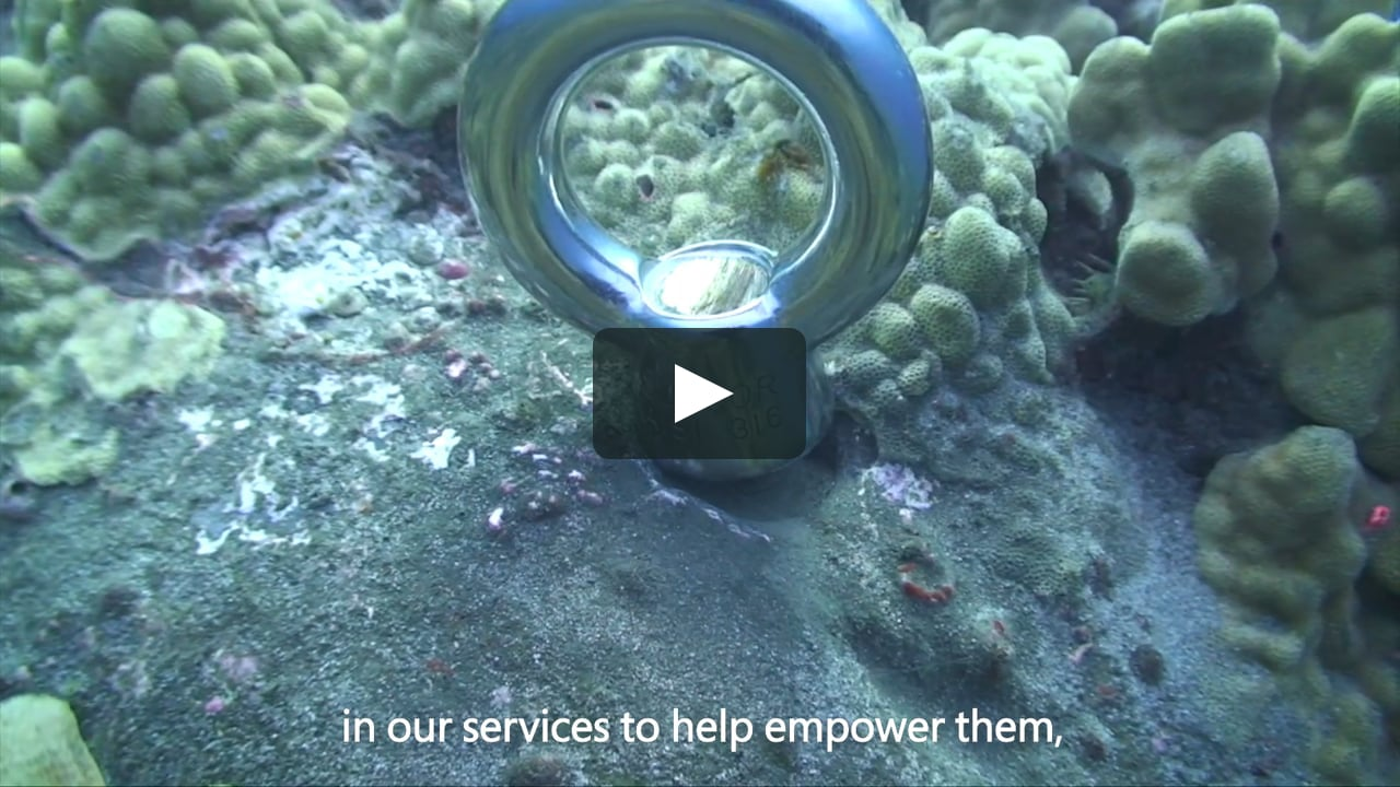 Microsoft Customer story: Jack's Diving Locker